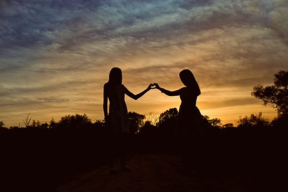 sunflower, silhouette, sunset, sisters