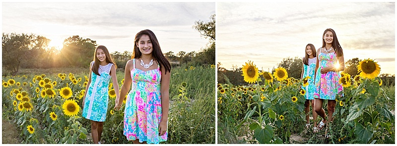 sisters, sunflower field
